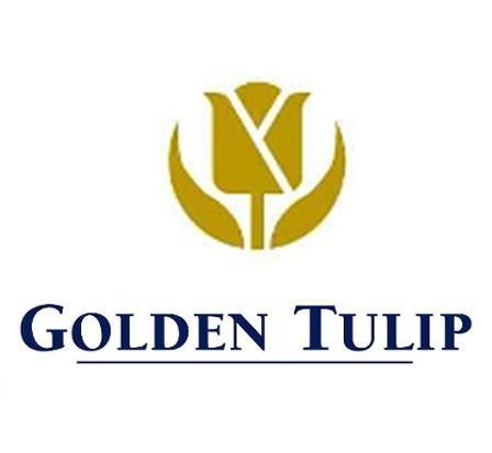 Golde Tulip